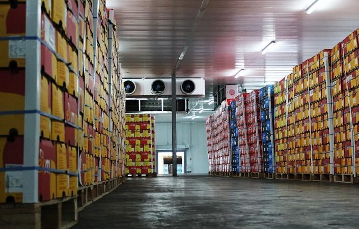 سردخانه مواد غذایی